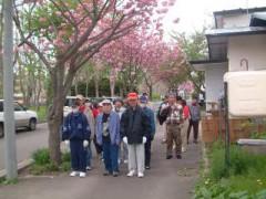 花見散歩②