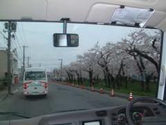 花見ドライブ①