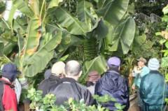2月27日(月)ドライブ法華熱帯植物園 146