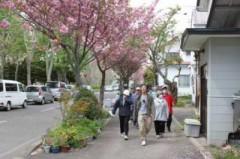 5月22日(火)お花見散歩 012