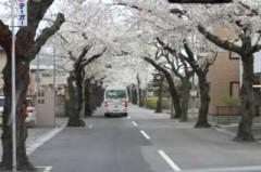 5月8日(火)お花見ドライブ 161